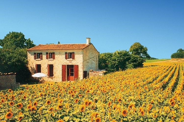 Holiday France Direct commission new website