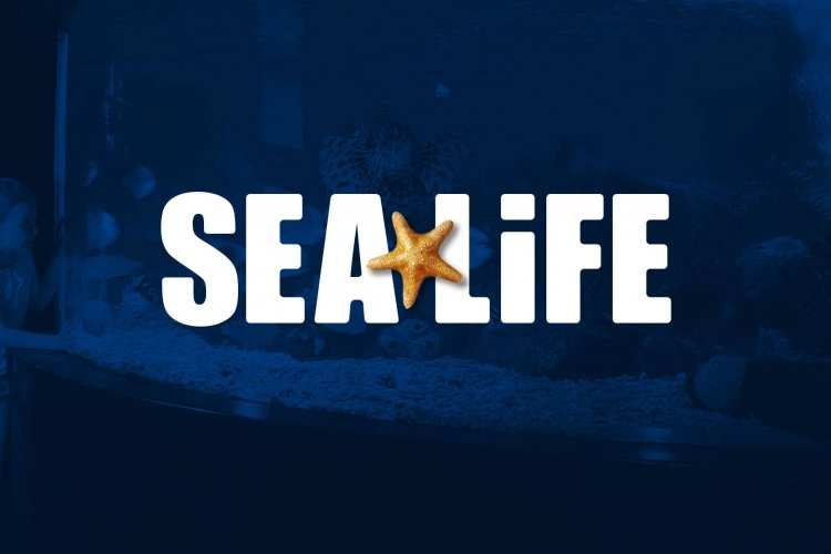 SEA LIFE create a splash with Facebook